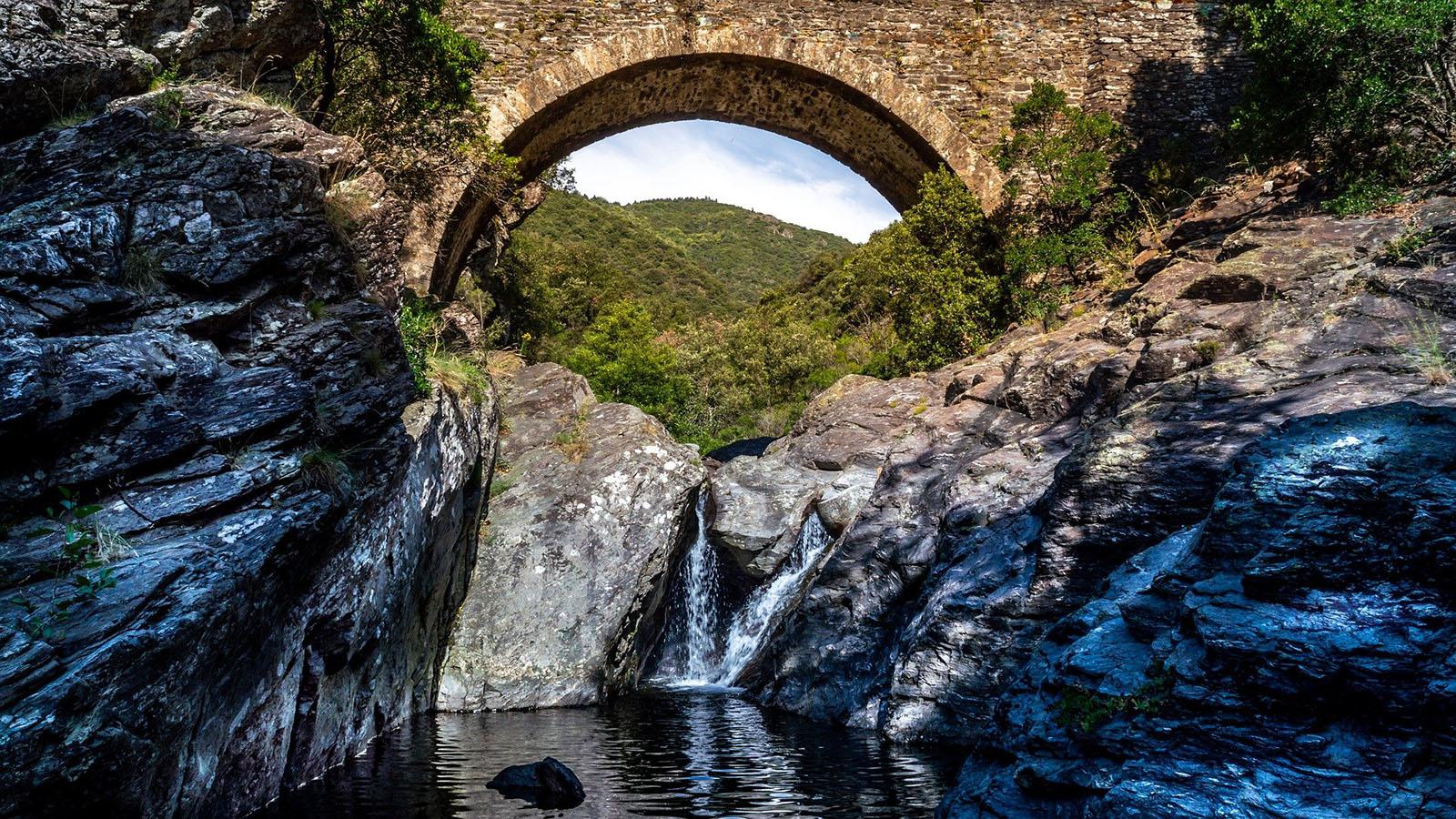 Une rivière passant sous un pont